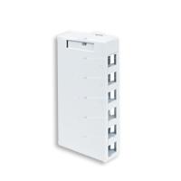 Leviton 41089-6WP 6 port surface mount box white